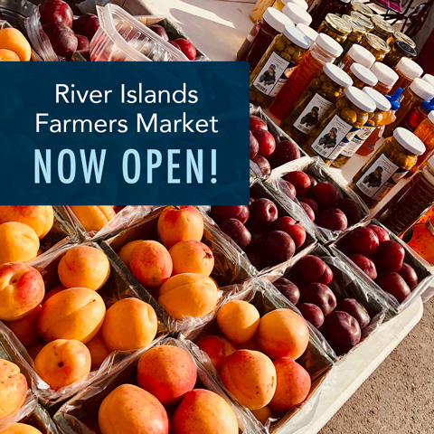 The Farmers Market at River Islands is Back!